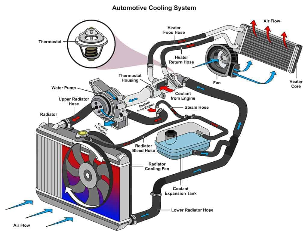 Illustration of an automotive cooling system infographic diagram.