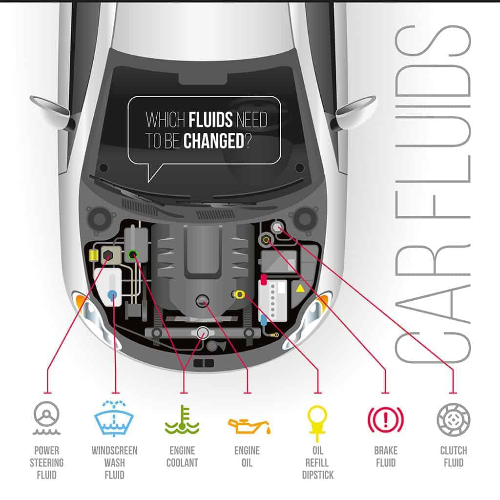 List of Automotive Fluids that are Flushed Infographic Diagram.